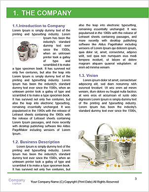 0000060923 Word Template - Page 3