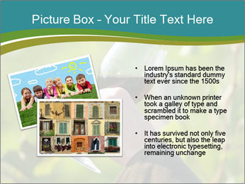 0000060932 PowerPoint Template - Slide 20