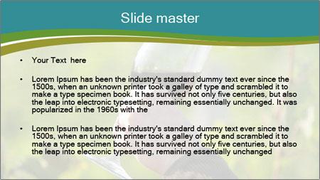 0000060932 PowerPoint Template - Slide 2