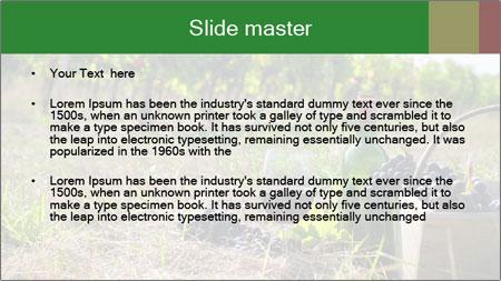 0000060934 PowerPoint Template - Slide 2