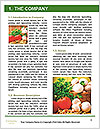 0000060935 Word Template - Page 3