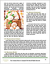 0000060935 Word Template - Page 4