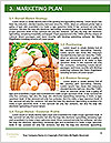 0000060935 Word Template - Page 8