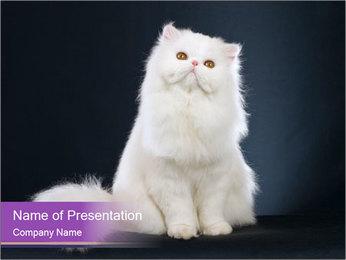 0000060938 PowerPoint Template - Slide 1