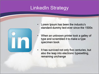 0000060938 PowerPoint Template - Slide 12