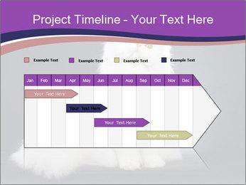 0000060938 PowerPoint Template - Slide 25