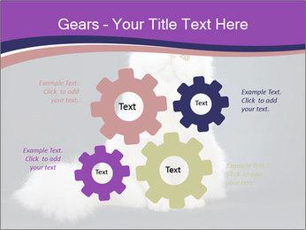 0000060938 PowerPoint Template - Slide 47