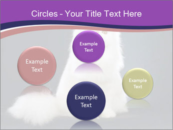 0000060938 PowerPoint Template - Slide 77