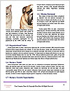 0000060938 Word Template - Page 4