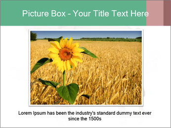 0000060952 PowerPoint Template - Slide 15