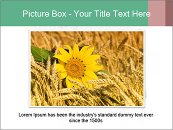 0000060952 PowerPoint Template - Slide 16