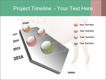 0000060952 PowerPoint Template - Slide 26