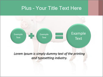 0000060952 PowerPoint Template - Slide 75