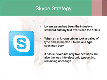 0000060952 PowerPoint Template - Slide 8