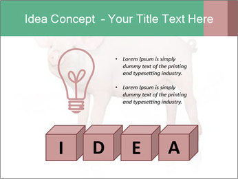 0000060952 PowerPoint Template - Slide 80