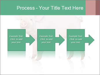 0000060952 PowerPoint Template - Slide 88