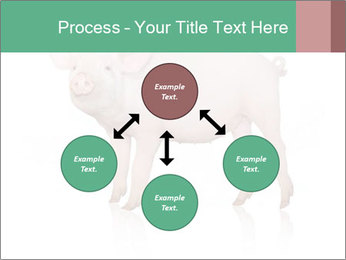 0000060952 PowerPoint Template - Slide 91