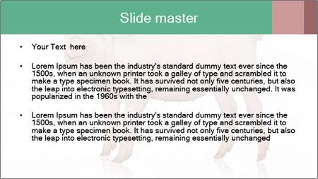 0000060952 PowerPoint Template - Slide 2