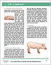0000060952 Word Template - Page 3