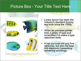 0000060953 PowerPoint Templates - Slide 13