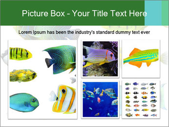 0000060953 PowerPoint Templates - Slide 19
