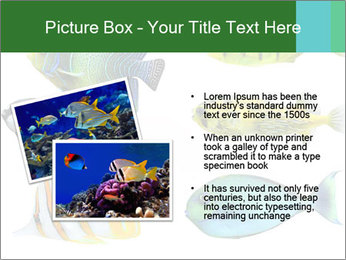 0000060953 PowerPoint Templates - Slide 20