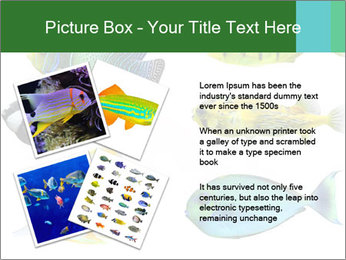 0000060953 PowerPoint Templates - Slide 23