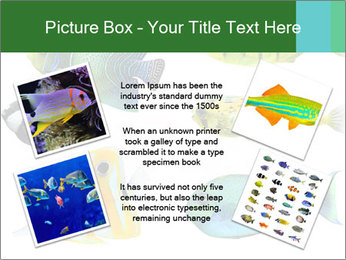 0000060953 PowerPoint Templates - Slide 24