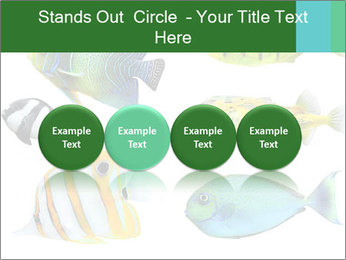 0000060953 PowerPoint Templates - Slide 76