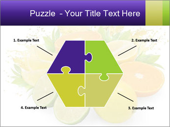 0000060957 PowerPoint Template - Slide 40