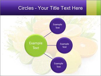 0000060957 PowerPoint Template - Slide 79