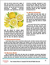 0000060958 Word Templates - Page 4