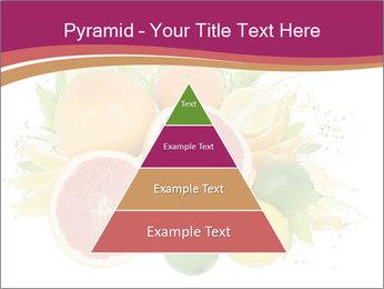 0000060960 PowerPoint Template - Slide 30