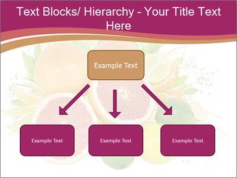 0000060960 PowerPoint Template - Slide 69