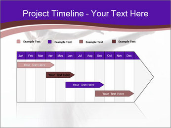 0000060987 PowerPoint Templates - Slide 25