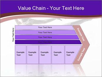 0000060987 PowerPoint Templates - Slide 27