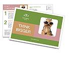 0000060988 Postcard Templates