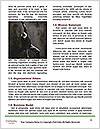 0000060990 Word Template - Page 4