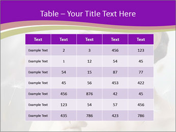 0000061005 PowerPoint Templates - Slide 55