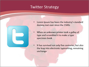 0000061011 PowerPoint Template - Slide 9