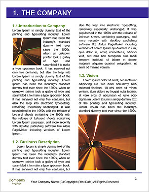 0000061031 Word Template - Page 3