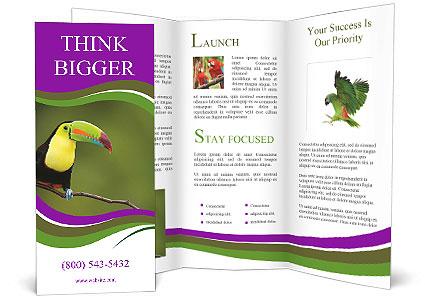 0000061041 Brochure Template