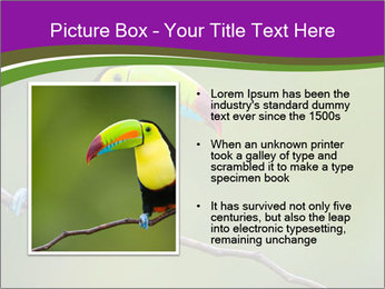 0000061041 PowerPoint Templates - Slide 13