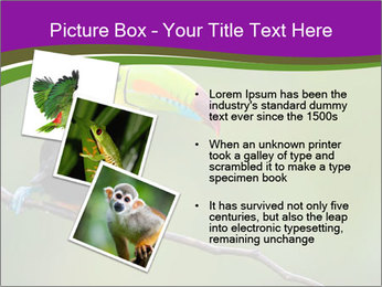 0000061041 PowerPoint Templates - Slide 17