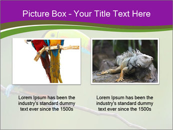 0000061041 PowerPoint Templates - Slide 18