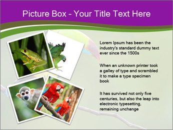 0000061041 PowerPoint Templates - Slide 23