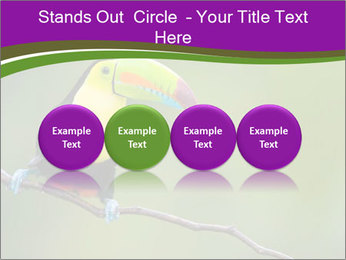 0000061041 PowerPoint Templates - Slide 76