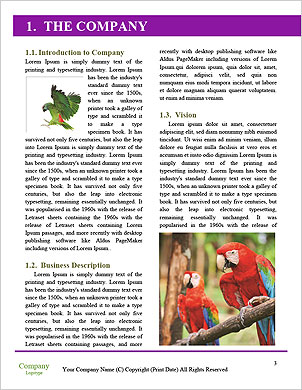 0000061041 Word Template - Page 3