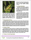 0000061041 Word Templates - Page 4