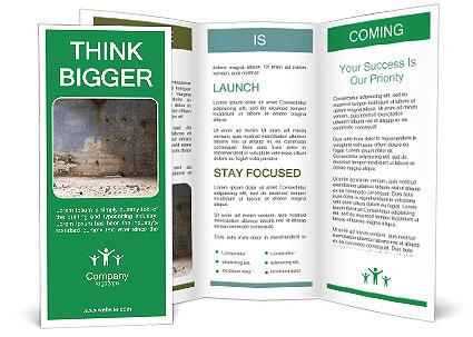 0000061054 Brochure Template